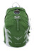 Osprey Talon 22 Backpack Men S/M Shamrock Green